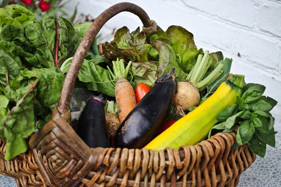 Korb voll Gemüse