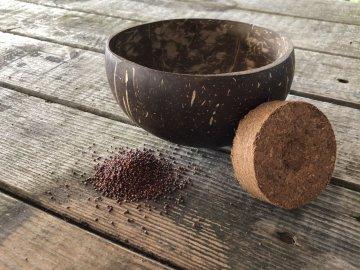 leere Kokosnussschale von Grow-Grow Nut