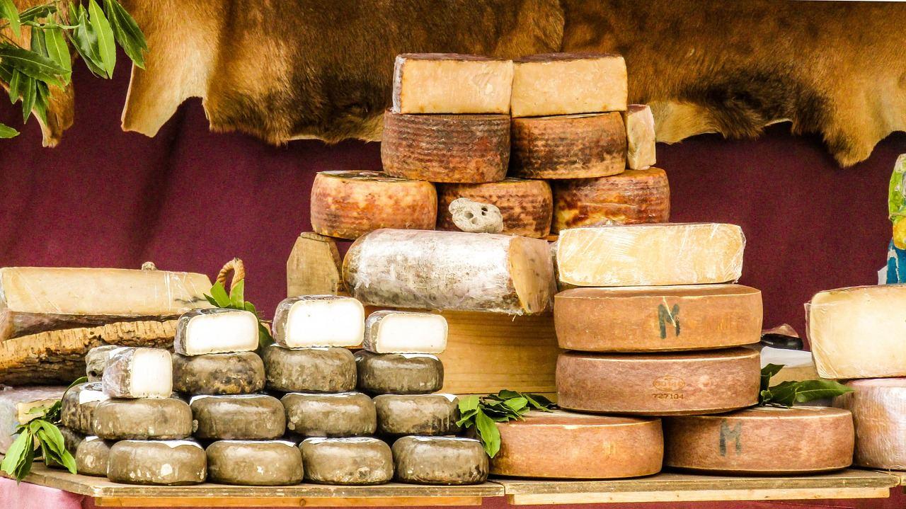Käse in allen Sorten