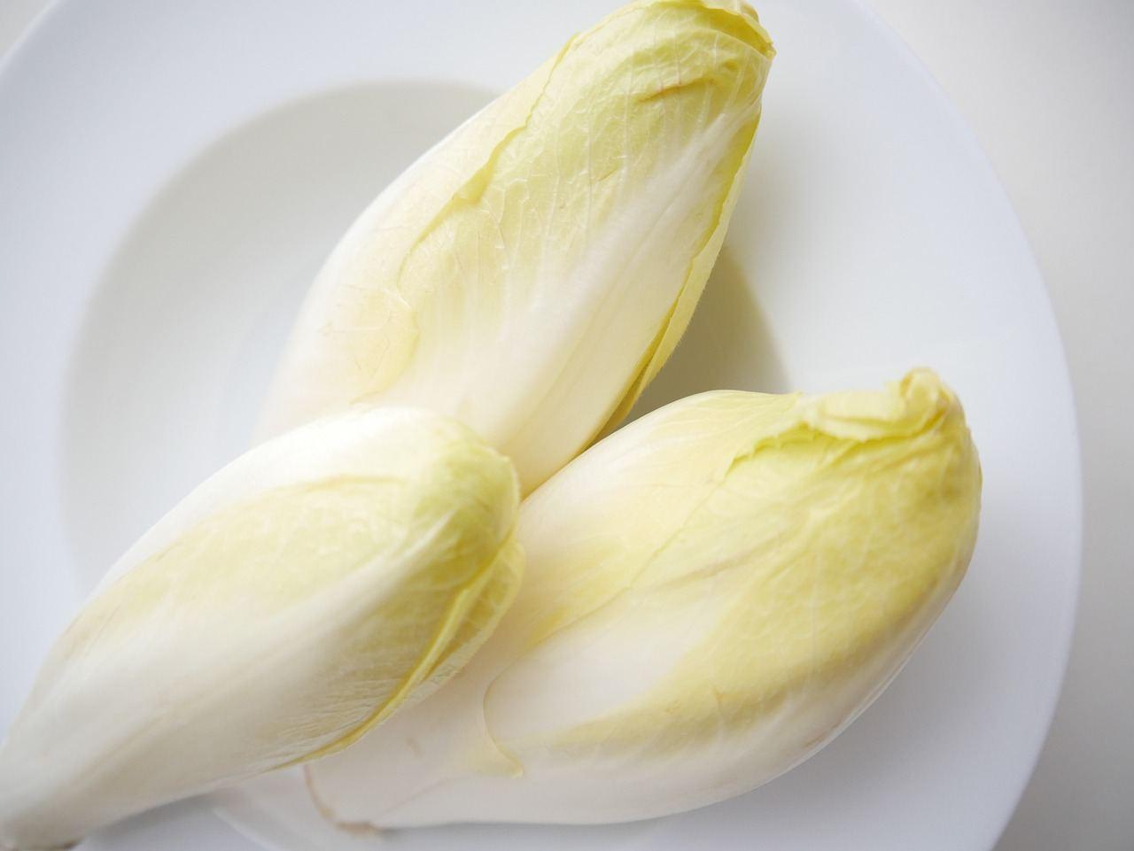 Chicorée auf einem weißen Teller